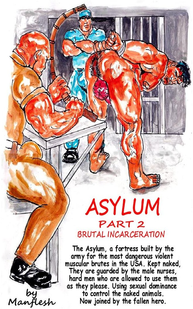 asylum_part_2_cover_layout_3