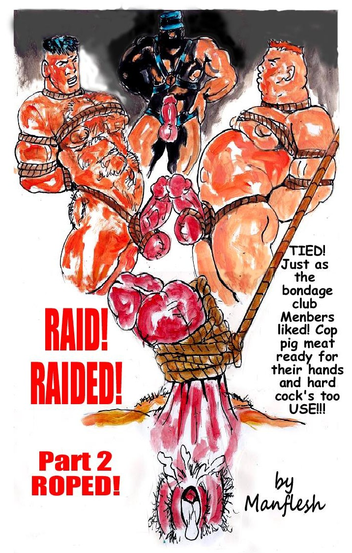 raid_part_2_cover_layout_3